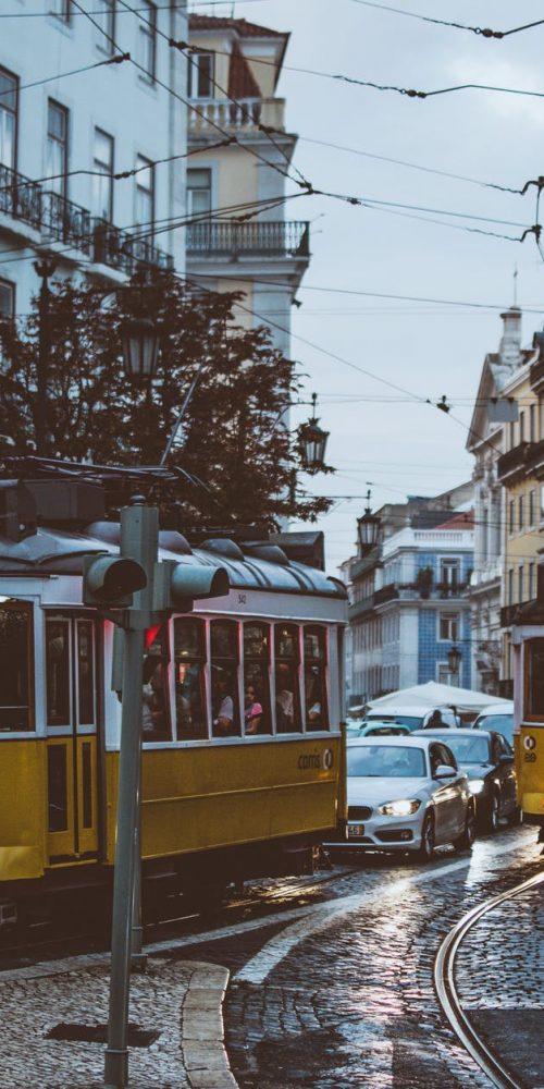 famílias empresárias em portugal